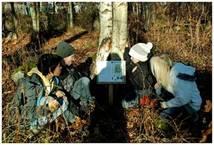 Skolskogen-barnen läser2